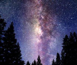 El Universo del Dr. Voynich